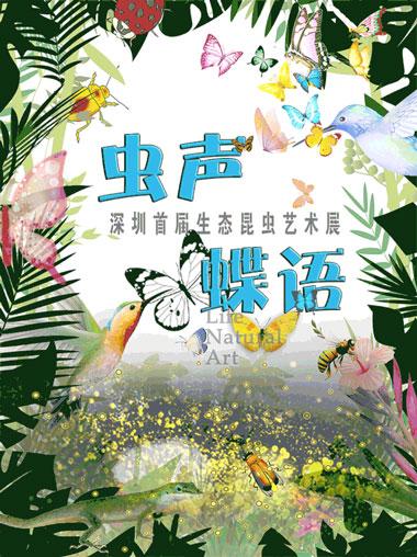 深圳首届生态昆虫艺术展
