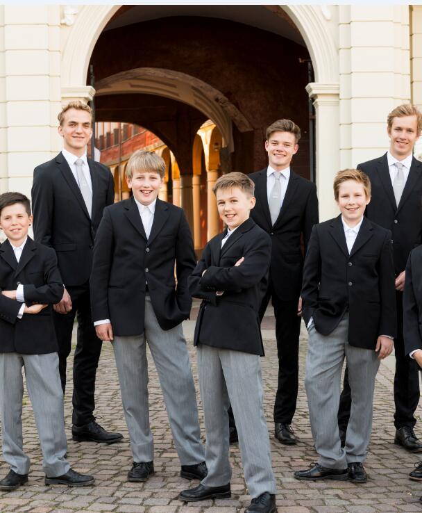 德国汉诺威男童合唱团音乐会长沙站