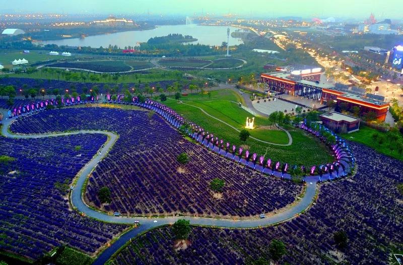 上海薰衣草庄园2020优惠门票及特价抢购