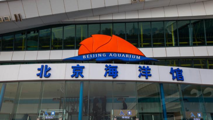 北京海洋馆攻略(门票价格+购票链接+线路图)