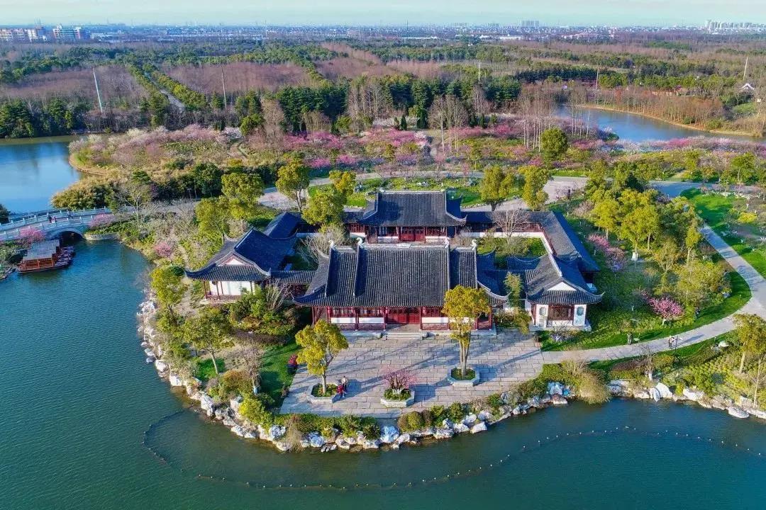 开园啦!上海海湾国家森林公园将于3月10日恢复开放!