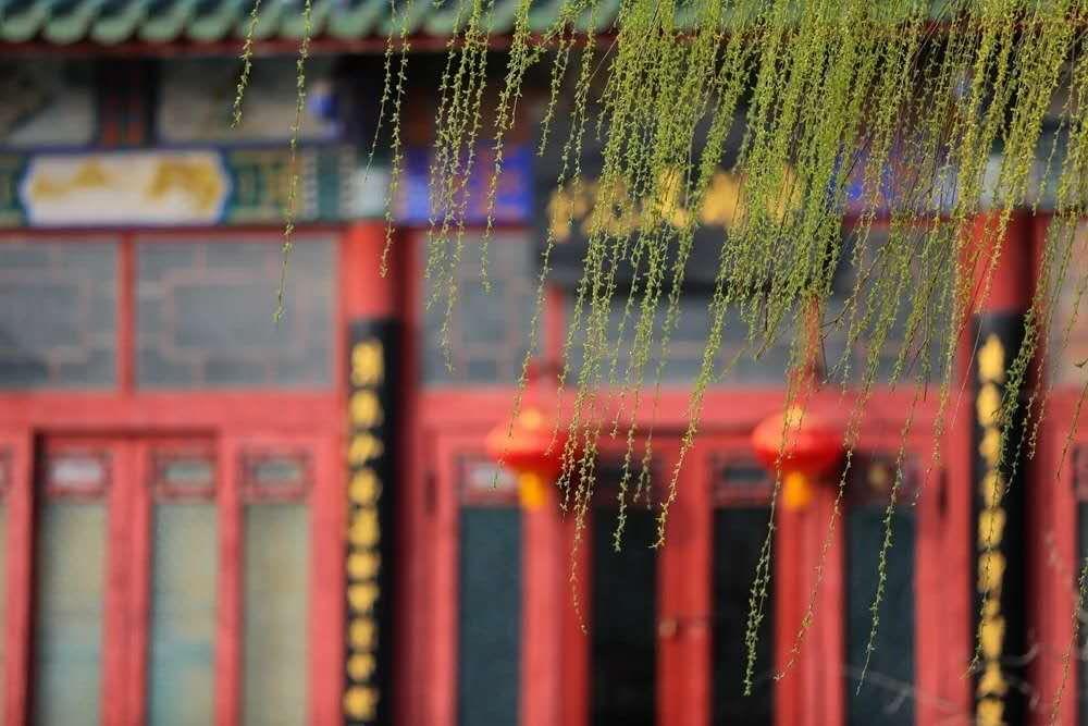 开封天波杨府将于3月18日开园啦,约上家人来踏青吧