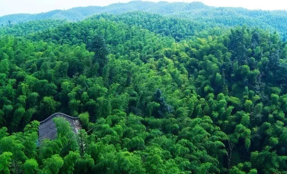 安吉灵峰山景区旅游攻略(地址+开放时间+票价)