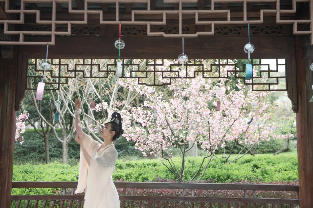 春游灵山|在诗词与春茶中品味春天