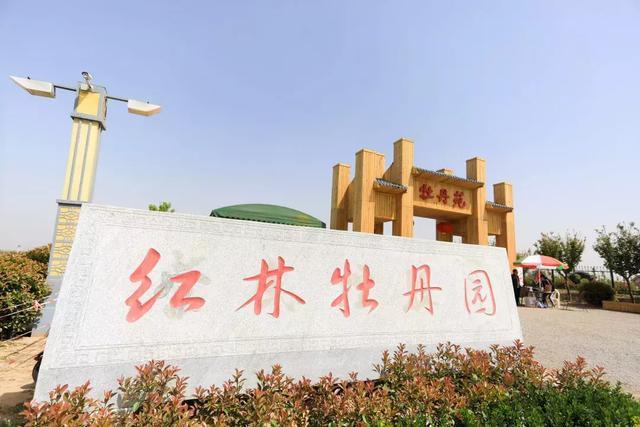 秦汉新城红林牡丹园