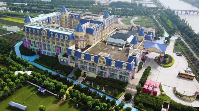 广州南沙百万葵园开园时间、门票价格及游玩攻略