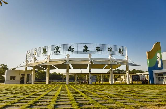 上海滨海森林公园有什么好玩的?2020上海滨海森林公园游玩攻略