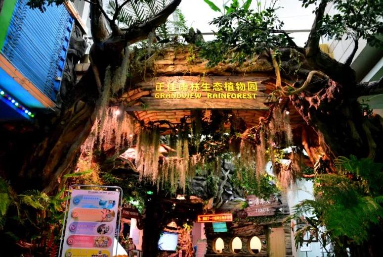 正佳雨林生态植物园
