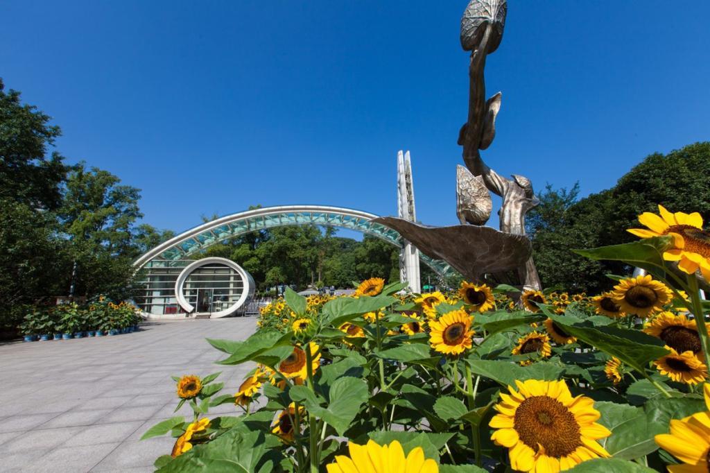重庆南山植物园开放了吗?门票价格多少钱?
