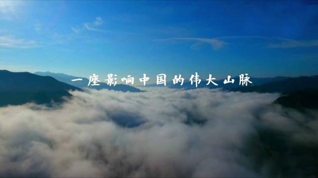 陕西行丨总书记来到秦岭,关注山清水秀有深意