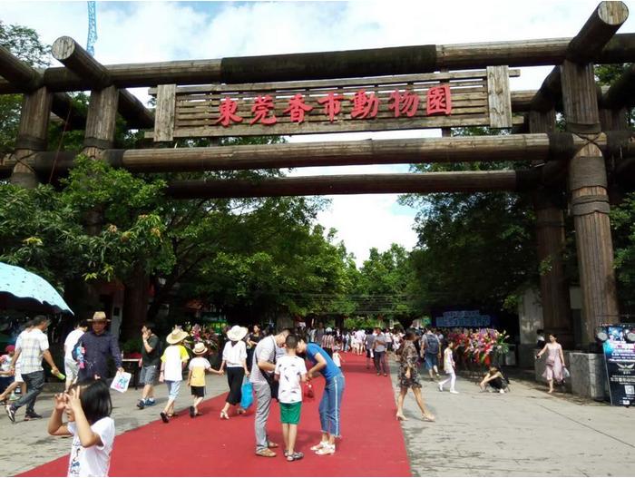 东莞寮步香市动物园门票是多少?香市动物园开放了吗?