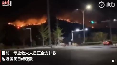 青岛小珠山山火复燃居民紧急撤离