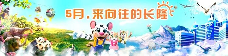 广州长隆野生动物世界和珠海长隆海洋王国,新晋的约会圣地