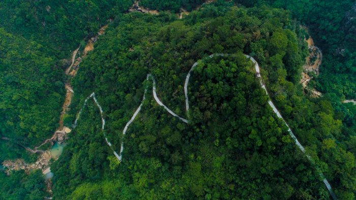 南海湾森林生态园