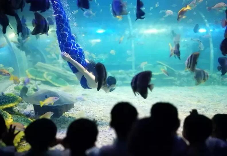 长沙海方海洋公园好玩吗?游玩攻略、门票团购