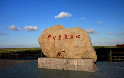 上海东滩湿地公园