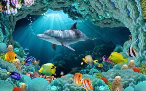 巴中海洋乐园