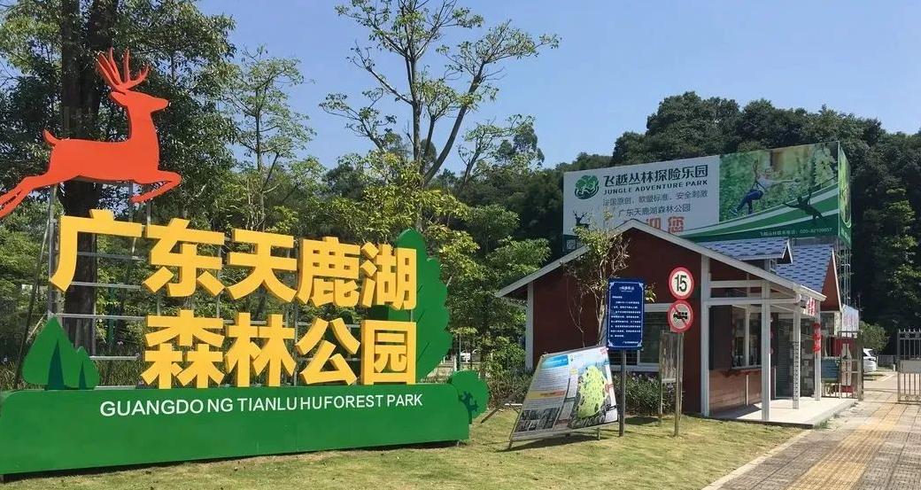 天鹿湖森林公園