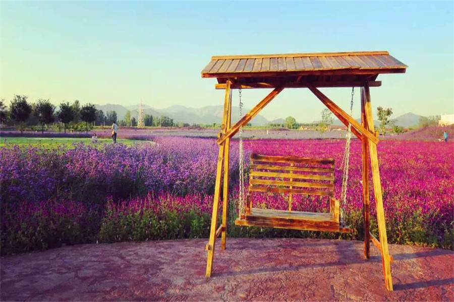 紫云水岸香草园
