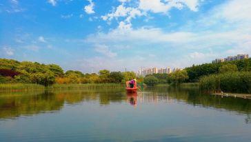 昆山城市生态森林公园