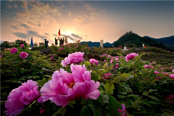 垫江太平牡丹园(恺之峰旅游区)