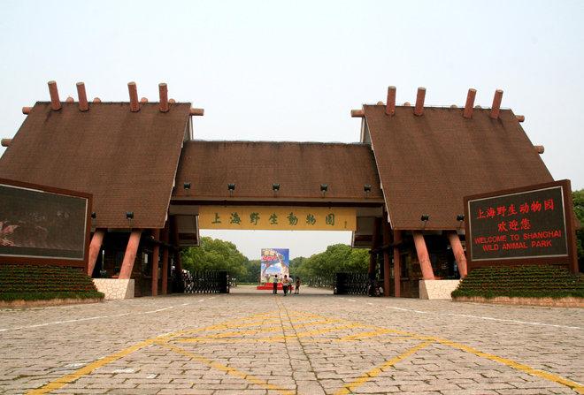 上海野生动物园攻略,上海野生动物园门票/游玩攻略/开放时间