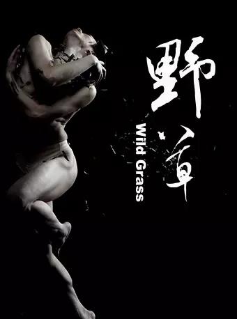 【杭州】王媛媛舞蹈作品 北京当代芭蕾舞团现代舞《野草》