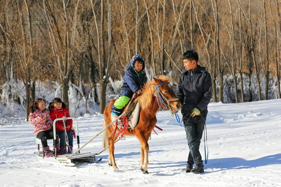 北京玉渡山风景区门票团购特惠中,感受北京自己的雪乡,感受冰雪独特的魅力!