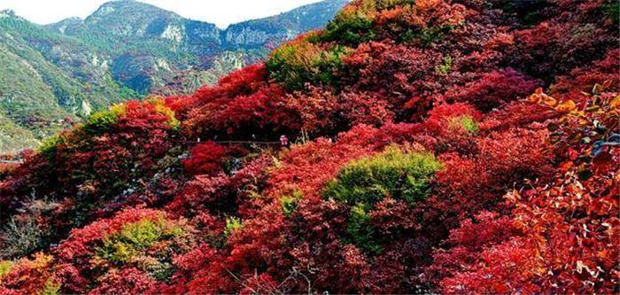 潍坊青州天赐山