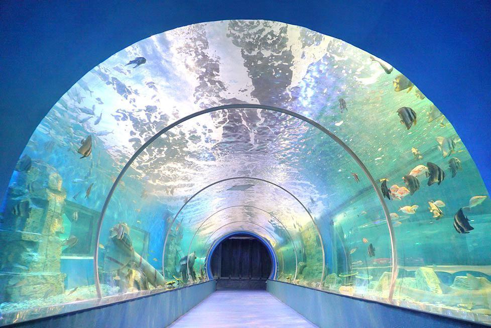 娄底海立方海洋公园