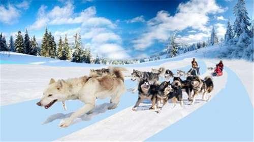 银川西夏风情园滑雪场