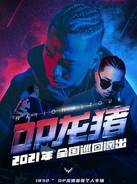 DP龙猪深圳演唱会