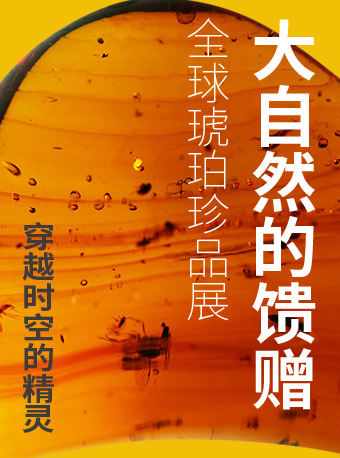 福州全球琥珀珍品展