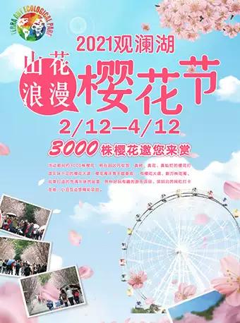 深圳观澜湖第五届樱花节