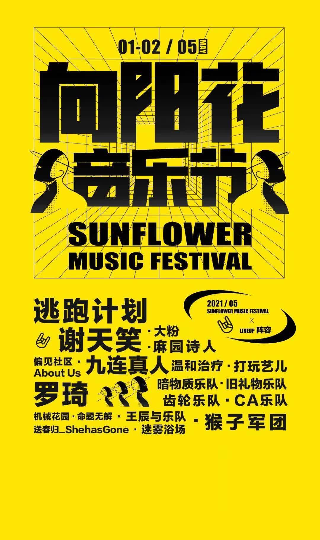 淄博向阳花音乐节