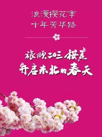 大连旅顺樱花节