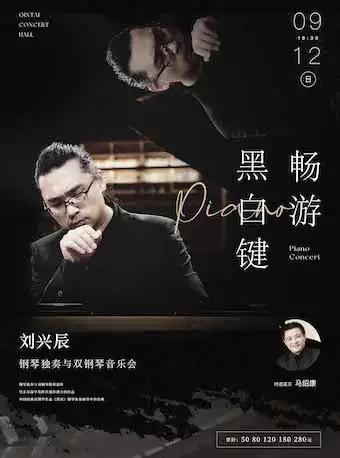 刘兴辰武汉音乐会
