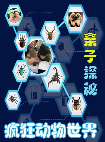 探秘瘋狂動物世界昆蟲標本北京站