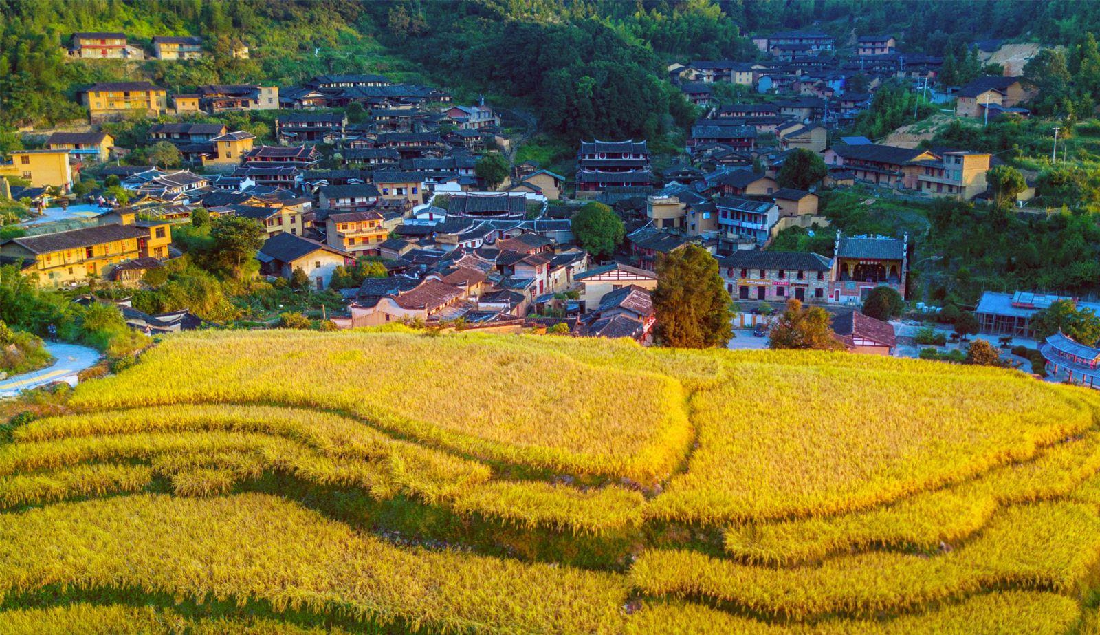桂峰古村落景区