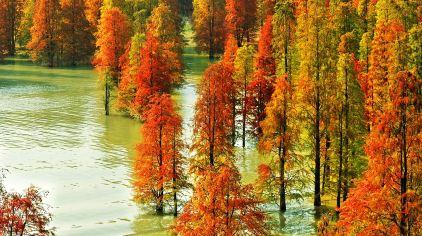 青山湖4129 (11)