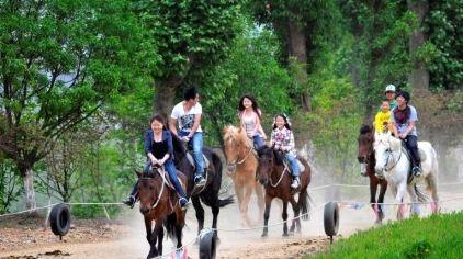 中南森林骑马