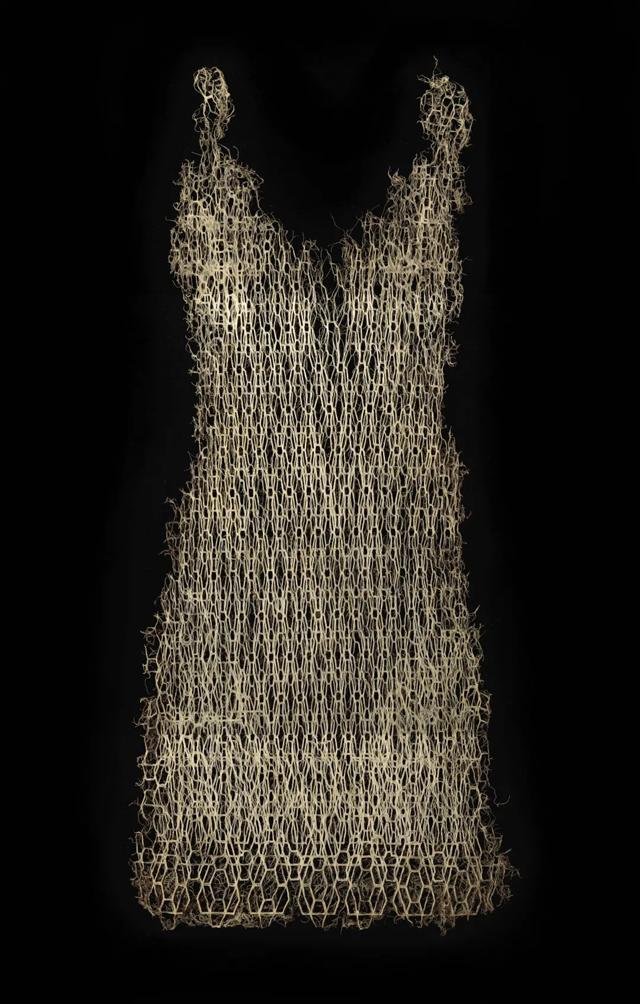 裙子Rootbound1.png