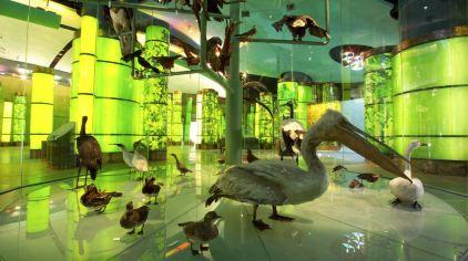 地球家园2_meitu_3.jpg